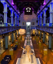 Interior of the Hunterian Museum - PIC: Stephen McCann